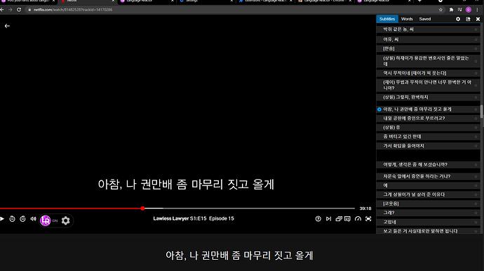 double subtitles
